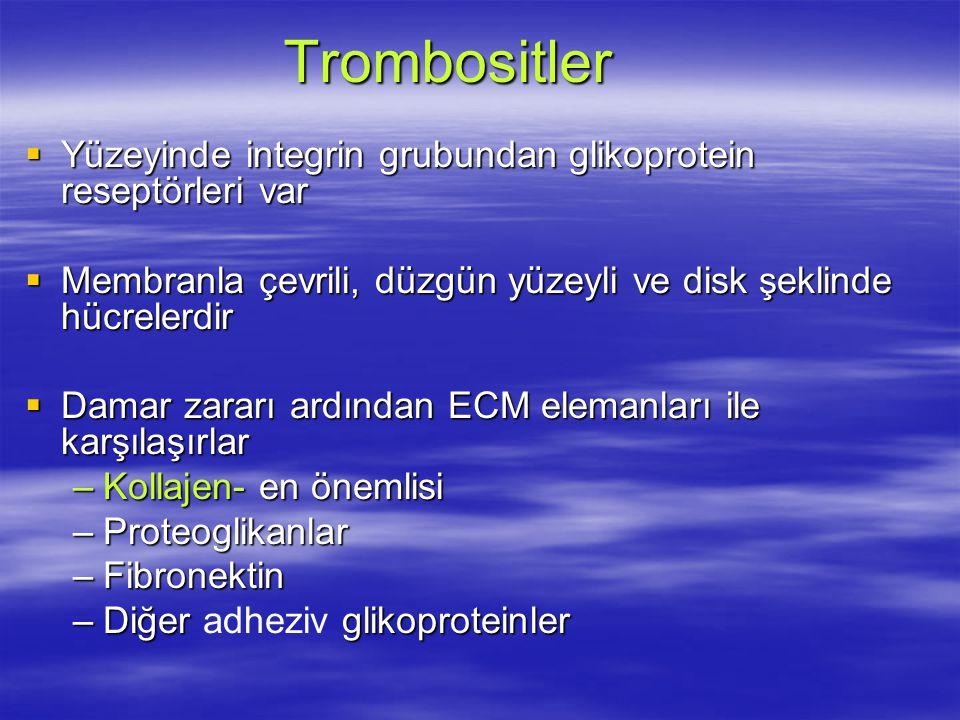 Trombositler  Yüzeyinde integrin grubundan glikoprotein reseptörleri var  Membranla çevrili, düzgün yüzeyli ve disk şeklinde hücrelerdir  Damar zararı ardından ECM elemanları ile karşılaşırlar –Kollajen- en önemlisi –Proteoglikanlar –Fibronektin –Diğer glikoproteinler –Diğer adheziv glikoproteinler