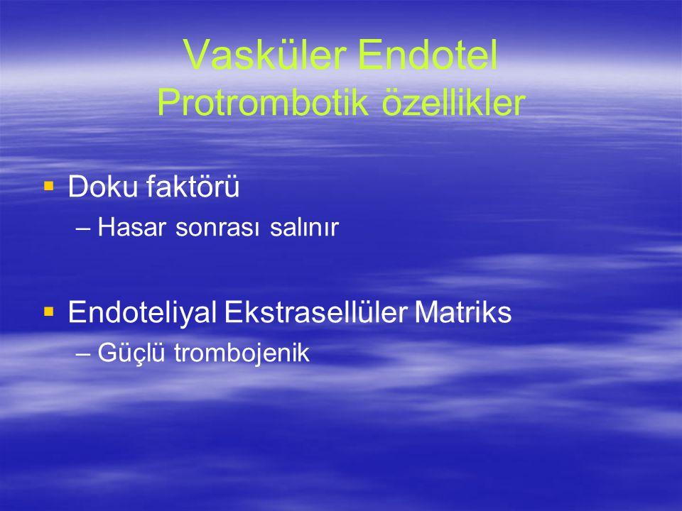 Vasküler Endotel Protrombotik özellikler   Doku faktörü – –Hasar sonrası salınır   Endoteliyal Ekstrasellüler Matriks – –Güçlü trombojenik