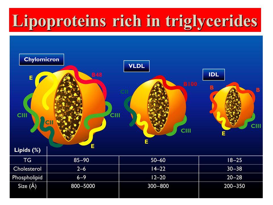 Dansitesi (g/ml) Trigliserid % Kolesterol % Protein % Fosfolipid % Şilomikro n >0.9586419 VLDL 0.95-1.0065421718 IDL 1.006-1.01930 1522 LDL 1.019-1.06310512118 HDL 1.063-1.2108214526 Lipoproteinlerin moleküler içerikleri