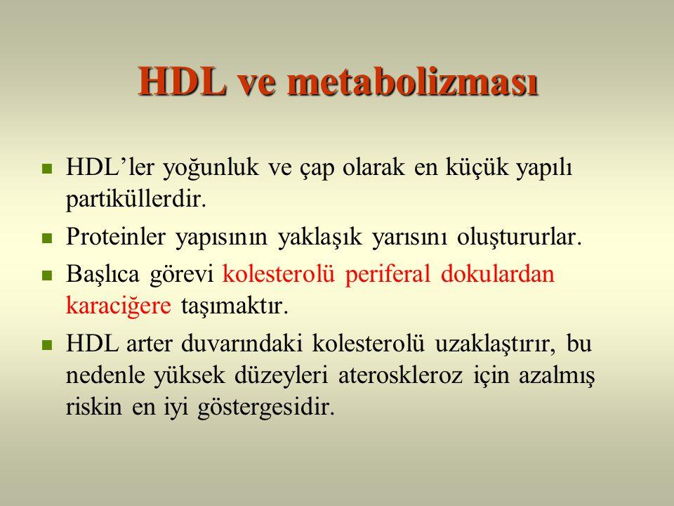 HDL İyi kolesterol !