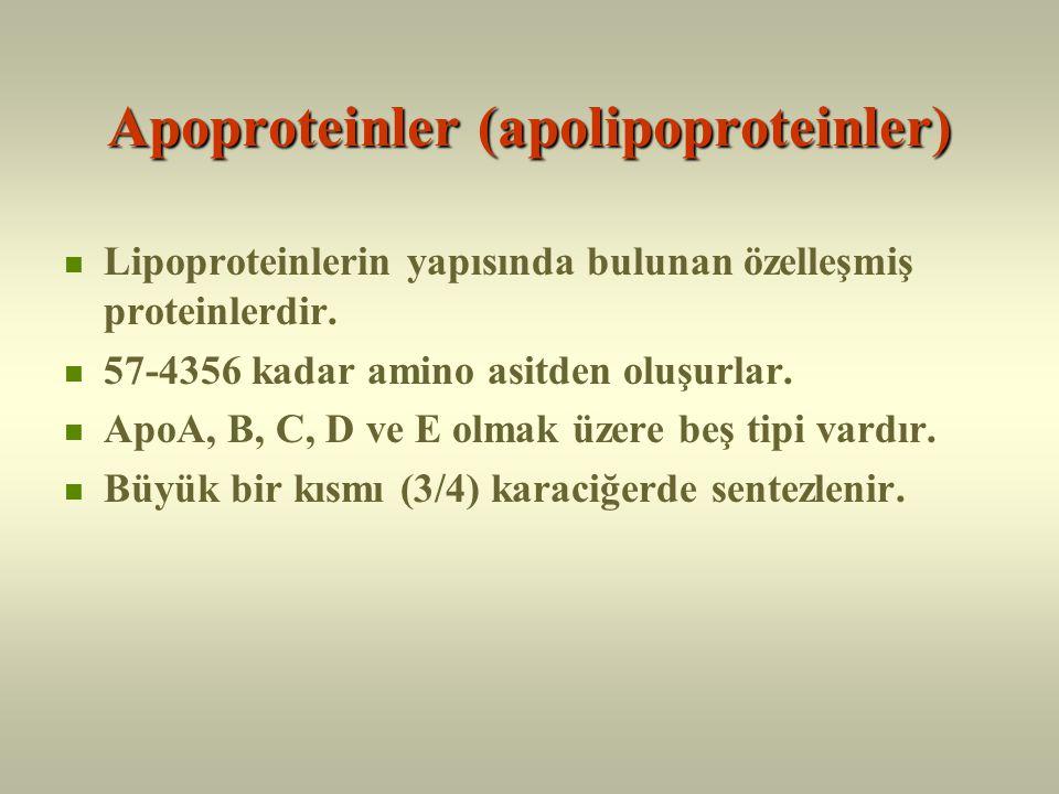 Lipoproteinler Lipidlerin plazmada taşınımları için proteinler ile paketlenmiş olmaları şarttır.