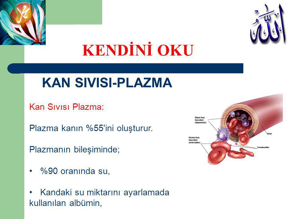 KAN SIVISI-PLAZMA Kan Sıvısı Plazma: Plazma kanın %55'ini oluşturur. Plazmanın bileşiminde; %90 oranında su, Kandaki su miktarını ayarlamada kullanıla