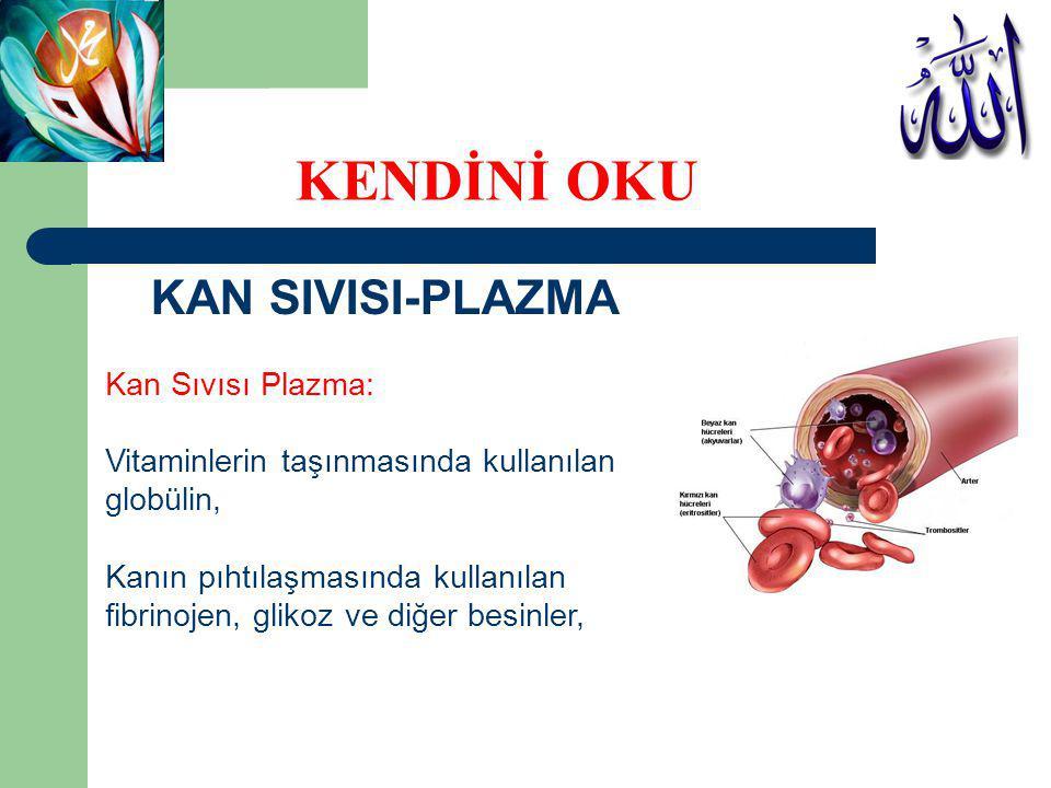 KAN SIVISI-PLAZMA Kan Sıvısı Plazma: Hücreler arası sıvının PH ını ve sıvı miktarını ayarlamakta kullanılan iyonlar, yağlar, aminoasitler, vitaminler ve oksijen, karbondioksit ve nitrojen gibi çözünmüş gazlar bulunmaktadır.