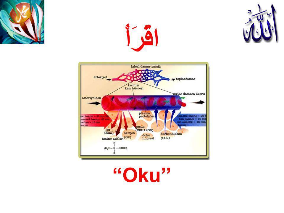 """اقْرَأْ """"Oku''"""