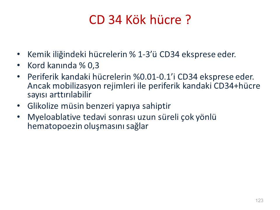 Kemik iliğindeki hücrelerin % 1-3'ü CD34 eksprese eder.