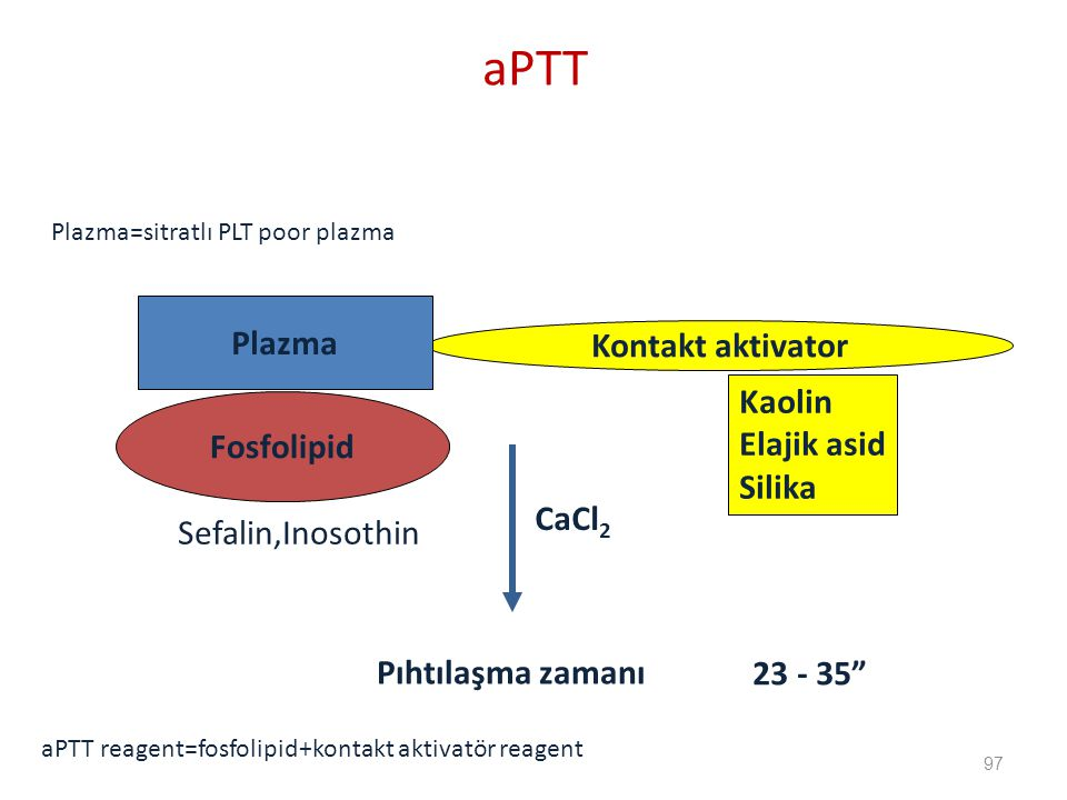 Kaolin Elajik asid Silika Kontakt aktivator Plazma Fosfolipid CaCl 2 Pıhtılaşma zamanı 23 - 35 Plazma=sitratlı PLT poor plazma aPTT reagent=fosfolipid+kontakt aktivatör reagent Sefalin,Inosothin aPTT 97