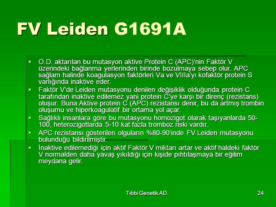 Tıbbi Genetik AD.24 FV Leiden FV Leiden G1691A  O.D.