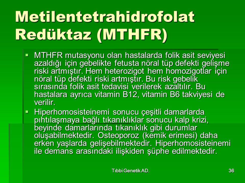 Tıbbi Genetik AD.36 Metilentetrahidrofolat Redüktaz (MTHFR)  MTHFR mutasyonu olan hastalarda folik asit seviyesi azaldığı için gebelikte fetusta nöral tüp defekti gelişme riski artmıştır.