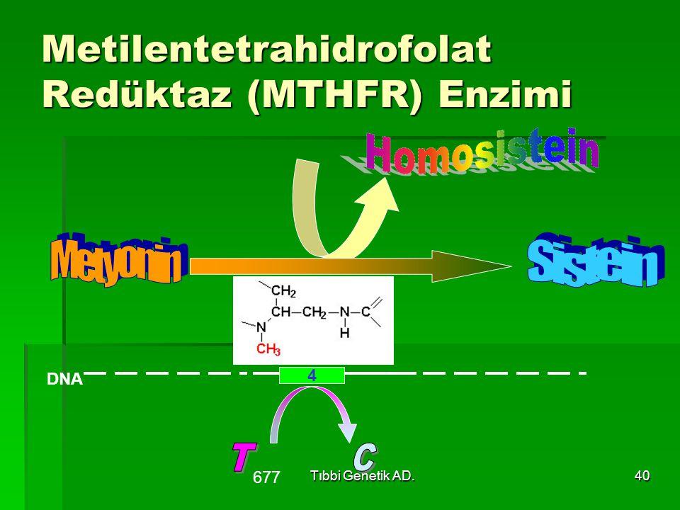 Tıbbi Genetik AD.40 Metilentetrahidrofolat Redüktaz (MTHFR) Enzimi 4 DNA 677