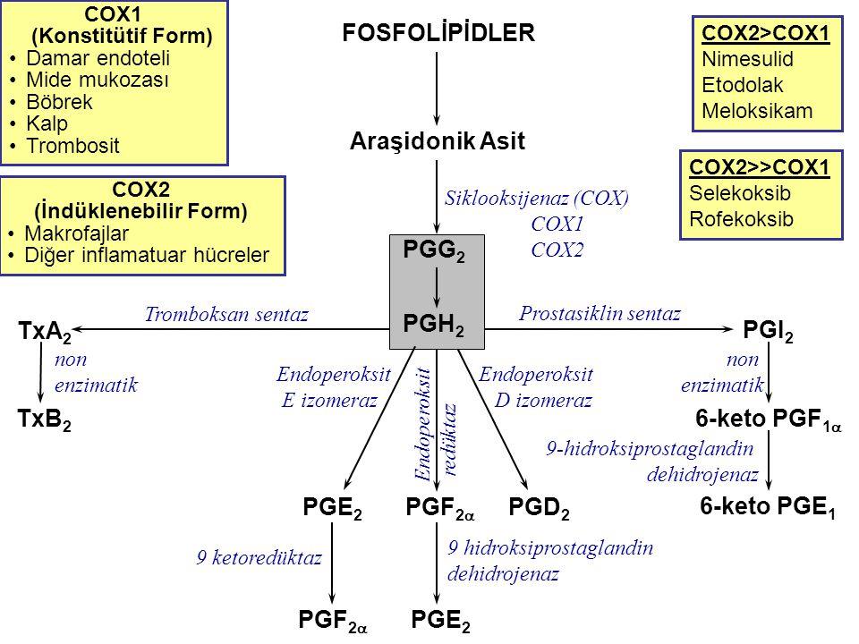 PGI 2 6-keto PGF 1  6-keto PGE 1 Prostasiklin sentaz non enzimatik FOSFOLİPİDLER Araşidonik Asit COX2>COX1 Nimesulid Etodolak Meloksikam COX2 (İndükl