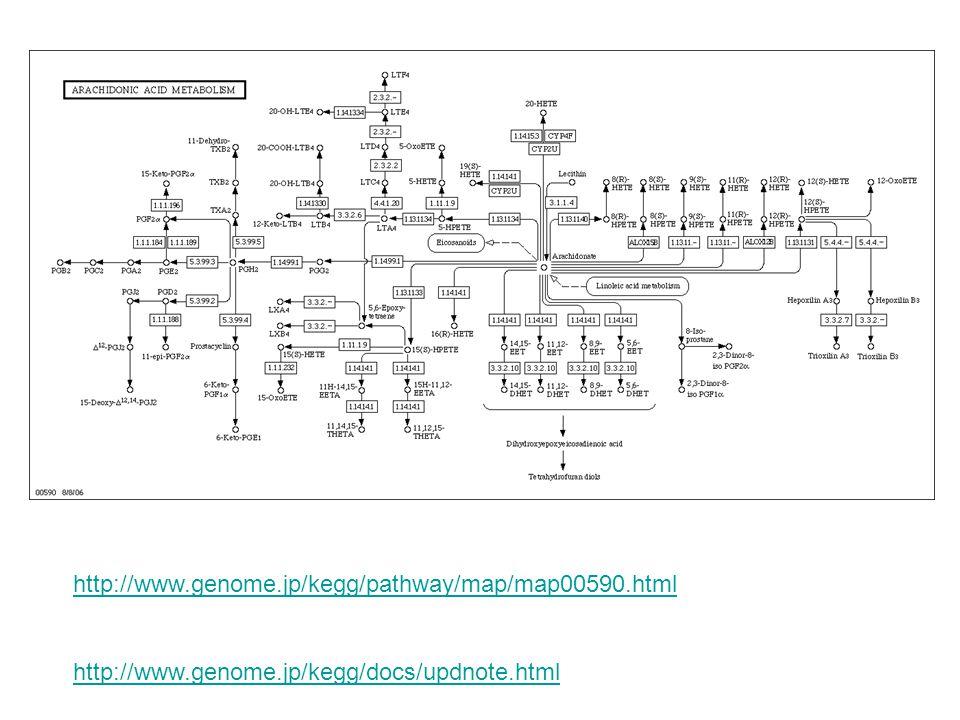 Membran Fosfolipidleri ARAŞİDONİK ASİT Prostaglandinler Lökotrienler ve Diğer Lipoksijenaz Ürünleri Sitokrom P450 Ürünleri Siklooksijenaz Sitokrom P450 5 Lipoksijenaz 12 Lipoksijenaz 15 Lipoksijenaz Fosfolipaz A2