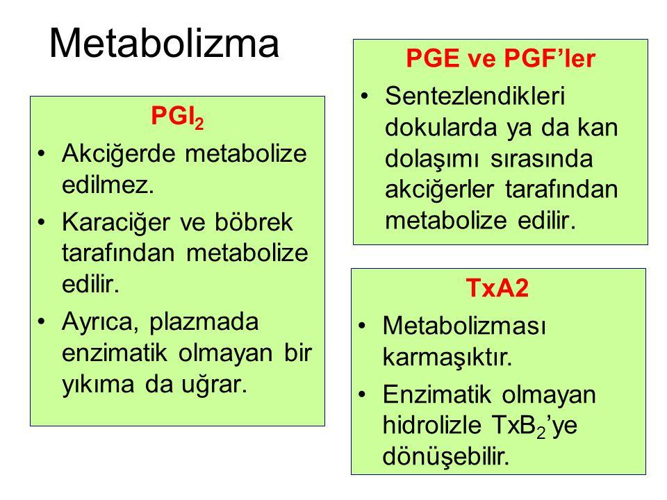 Metabolizma PGE ve PGF'ler Sentezlendikleri dokularda ya da kan dolaşımı sırasında akciğerler tarafından metabolize edilir. PGI 2 Akciğerde metabolize