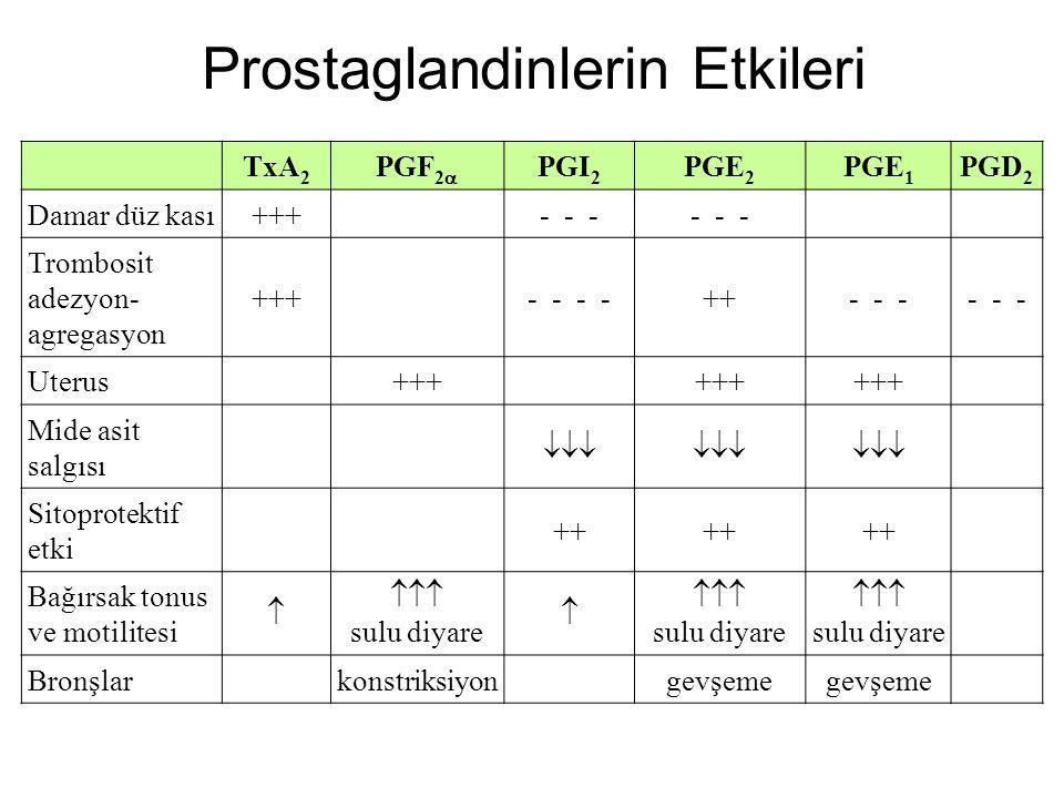 TxA 2 PGF 2  PGI 2 PGE 2 PGE 1 PGD 2 Damar düz kası+++ ‑ ‑ ‑ Trombosit adezyon ‑ agregasyon +++ ‑ ‑ ++ ‑ ‑ ‑ Uterus+++ Mide asit salgısı  Sitoprot