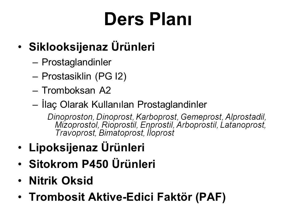 Ders Planı Siklooksijenaz Ürünleri –Prostaglandinler –Prostasiklin (PG I2) –Tromboksan A2 –İlaç Olarak Kullanılan Prostaglandinler Dinoproston, Dinopr