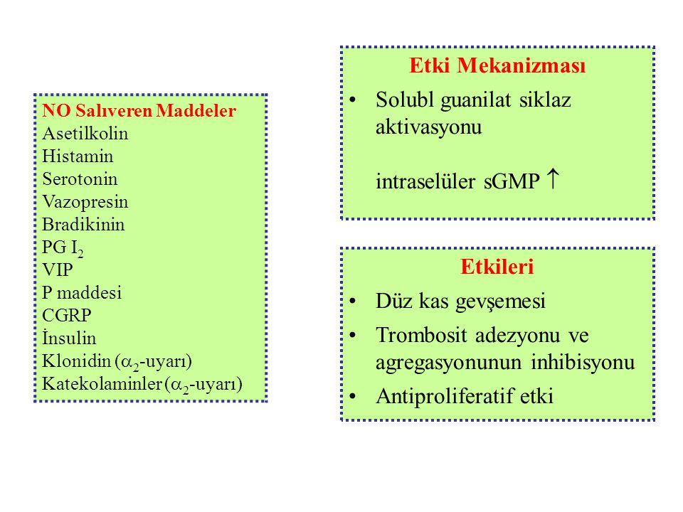 Etkileri Düz kas gevşemesi Trombosit adezyonu ve agregasyonunun inhibisyonu Antiproliferatif etki NO Salıveren Maddeler Asetilkolin Histamin Serotonin