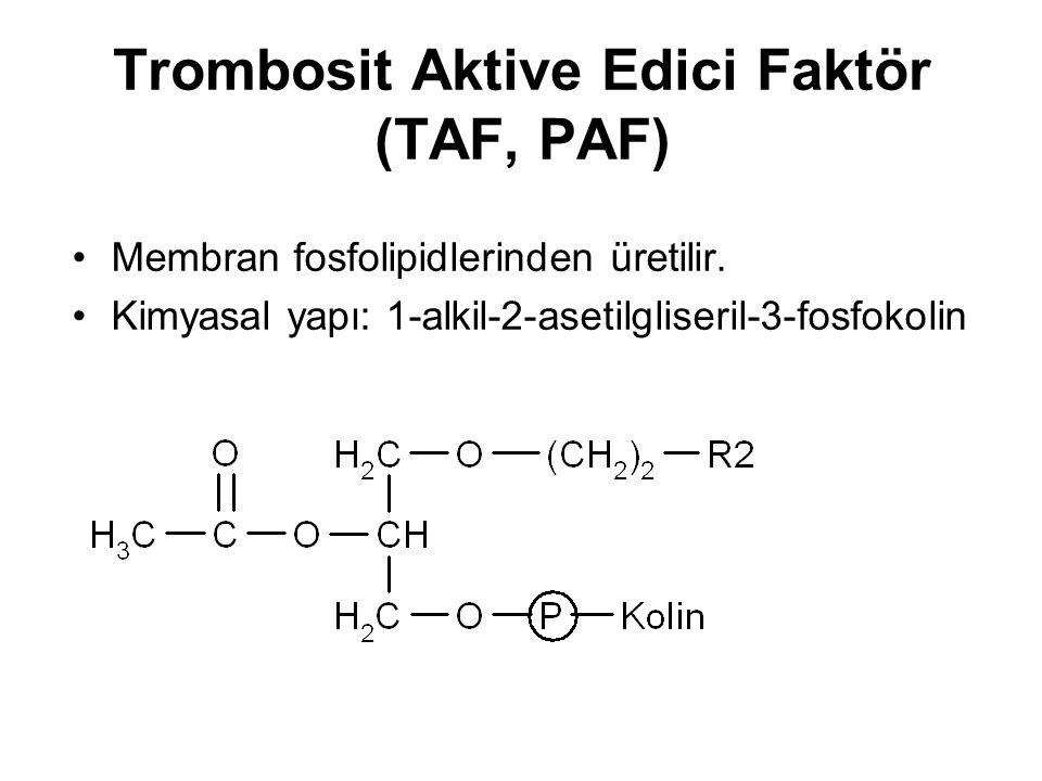 Trombosit Aktive Edici Faktör (TAF, PAF) Membran fosfolipidlerinden üretilir. Kimyasal yapı: 1-alkil-2-asetilgliseril-3-fosfokolin