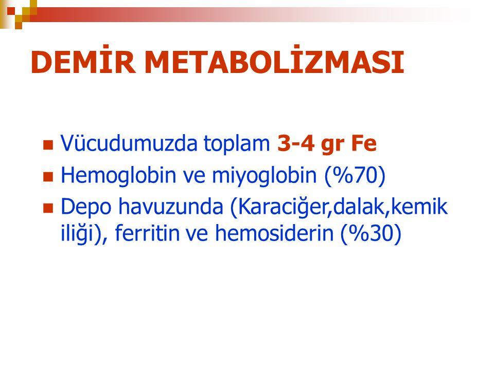 DEMİR METABOLİZMASI Vücudumuzda toplam 3-4 gr Fe Hemoglobin ve miyoglobin (%70) Depo havuzunda (Karaciğer,dalak,kemik iliği), ferritin ve hemosiderin