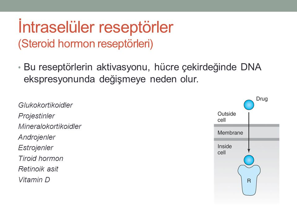 İntraselüler reseptörler (Steroid hormon reseptörleri) Bu reseptörlerin aktivasyonu, hücre çekirdeğinde DNA ekspresyonunda değişmeye neden olur. Gluko