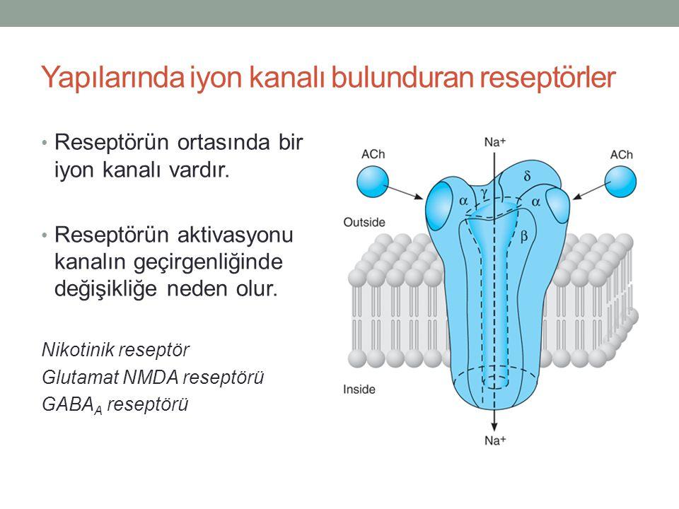Yapılarında iyon kanalı bulunduran reseptörler Reseptörün ortasında bir iyon kanalı vardır. Reseptörün aktivasyonu kanalın geçirgenliğinde değişikliğe