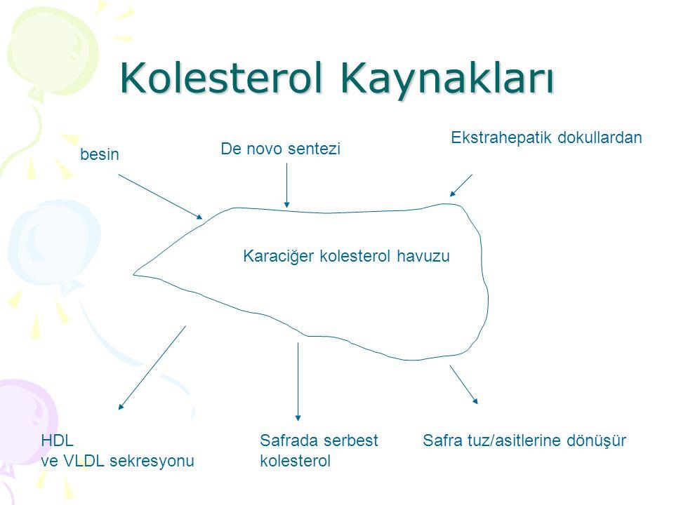 Kolesterol Kaynakları besin De novo sentezi Ekstrahepatik dokullardan Karaciğer kolesterol havuzu Safrada serbest kolesterol Safra tuz/asitlerine dönüşürHDL ve VLDL sekresyonu