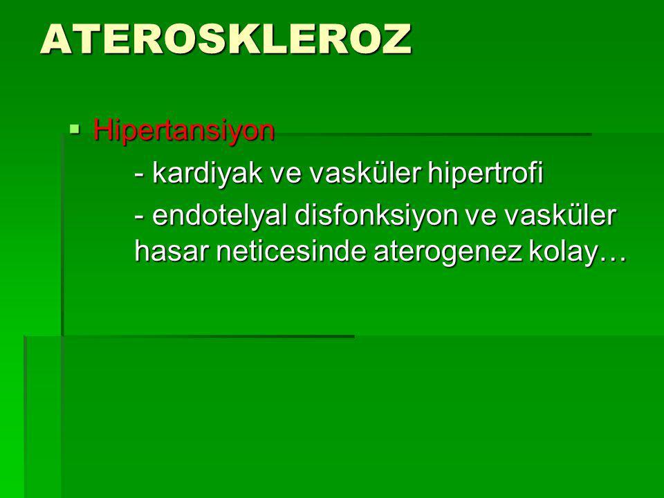 ATEROSKLEROZ  Hipertansiyon - kardiyak ve vasküler hipertrofi - kardiyak ve vasküler hipertrofi - endotelyal disfonksiyon ve vasküler hasar neticesin
