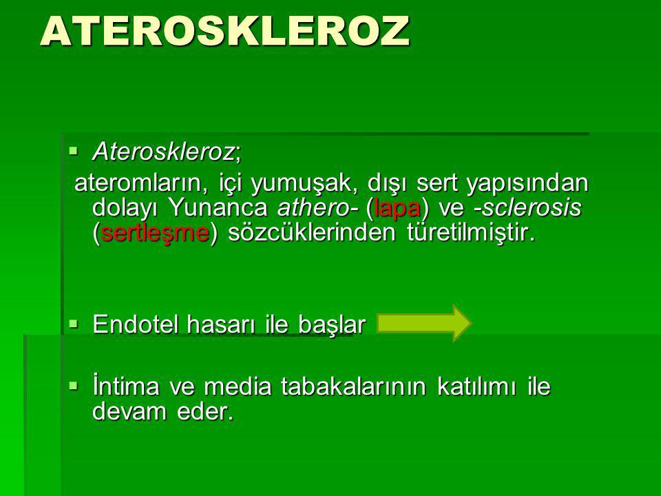ATEROSKLEROTİK KALP HASTALIKLARI  NEDEN ÖNEMLİ .