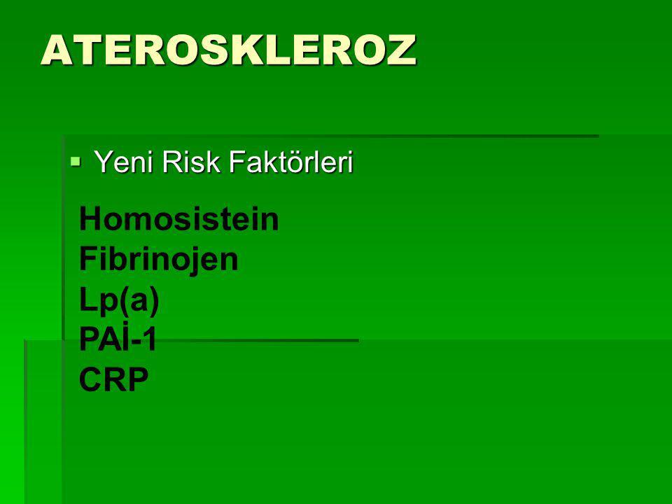 ATEROSKLEROZ  Yeni Risk Faktörleri Homosistein Fibrinojen Lp(a) PAİ-1 CRP