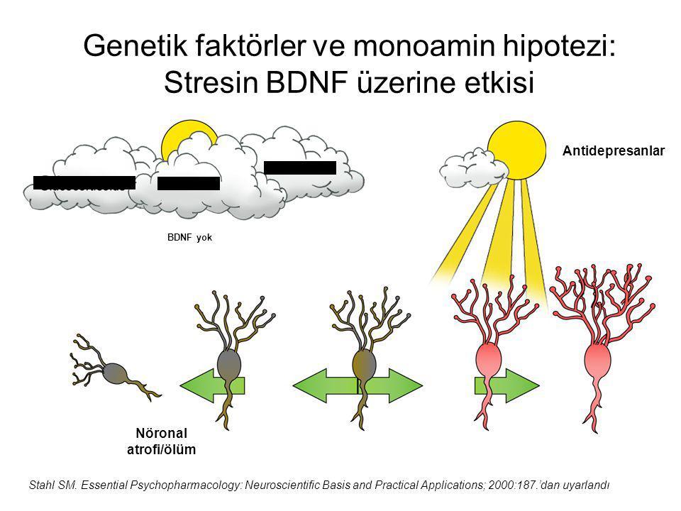 Genetik faktörler ve monoamin hipotezi: Stresin BDNF üzerine etkisi Stahl SM. Essential Psychopharmacology: Neuroscientific Basis and Practical Applic