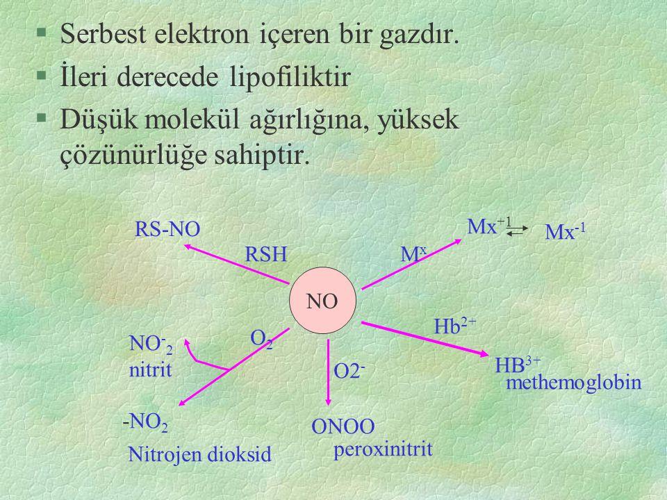 Oksijen-NO Reaksiyonu §O 2 ile birleşerek inaktif metabolitleri.nitrit ve nitrata dönüşür.