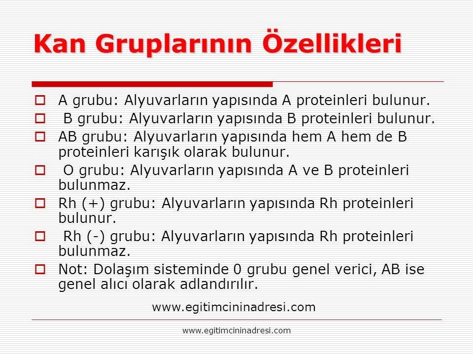 Kan Gruplarının Özellikleri  A grubu: Alyuvarların yapısında A proteinleri bulunur.  B grubu: Alyuvarların yapısında B proteinleri bulunur.  AB gru