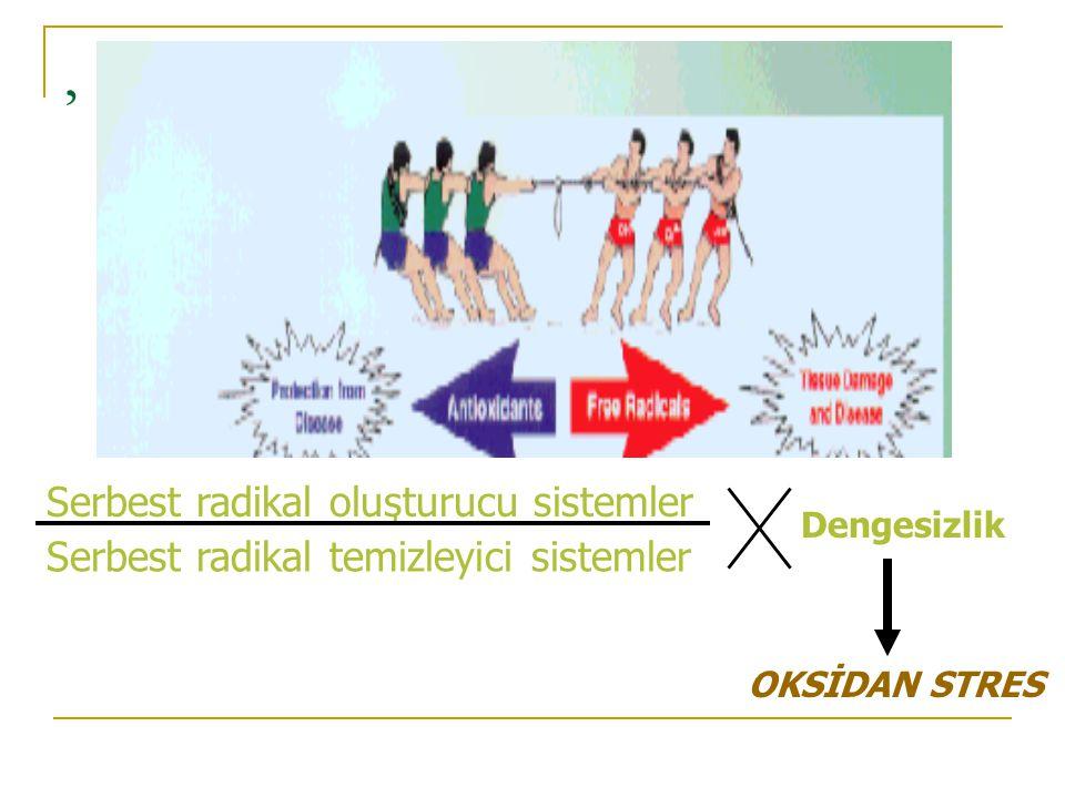 , Serbest radikal oluşturucu sistemler Serbest radikal temizleyici sistemler Dengesizlik OKSİDAN STRES