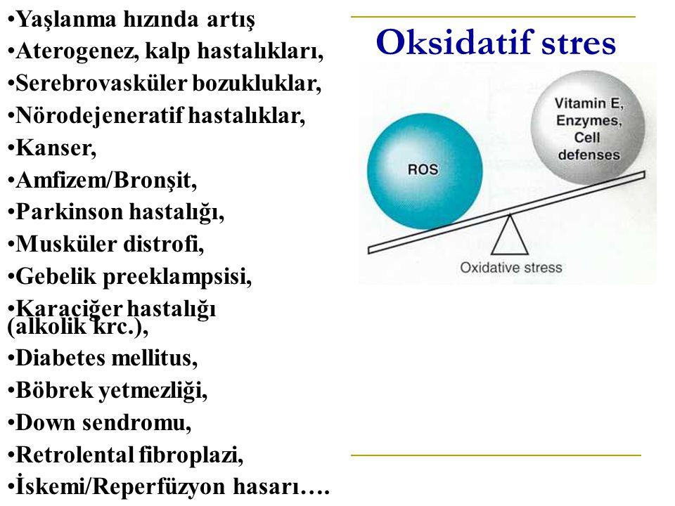 Oksidatif stres Yaşlanma hızında artış Aterogenez, kalp hastalıkları, Serebrovasküler bozukluklar, Nörodejeneratif hastalıklar, Kanser, Amfizem/Bronşit, Parkinson hastalığı, Musküler distrofi, Gebelik preeklampsisi, Karaciğer hastalığı (alkolik krc.), Diabetes mellitus, Böbrek yetmezliği, Down sendromu, Retrolental fibroplazi, İskemi/Reperfüzyon hasarı….