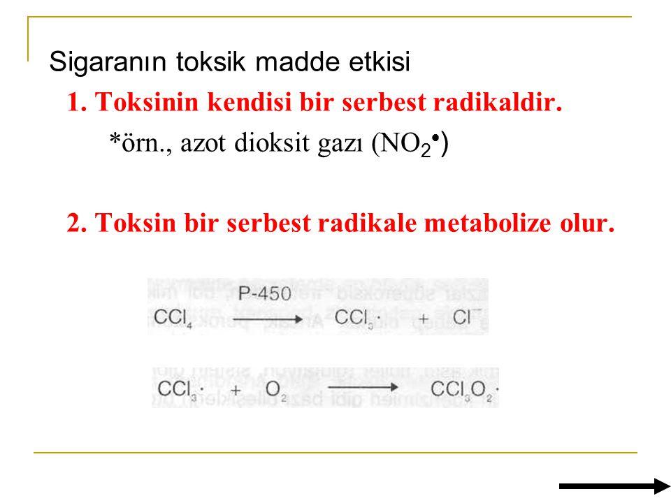 Sigaranın toksik madde etkisi 1.Toksinin kendisi bir serbest radikaldir.