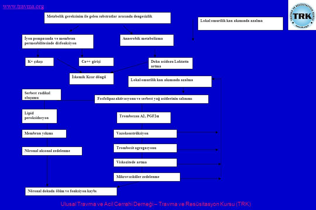 Ulusal Travma ve Acil Cerrahi Derneği – Travma ve Resüsitasyon Kursu (TRK) www.travma.org Lokal omurilik kan akımında azalma Metabolik gereksinim ile gelen substratlar arasında dengesizlik İyon pompasında ve membran permeabilitesinde disfonksiyon Anaerobik metabolizma K+ çıkışıCa++ girişiDoku asidozu Laktatta artma İskemik Kısır döngü Serbest radikal oluşumu Lipid peroksidasyon Membran yıkımı Nöronal aksonal zedelenme Lokal omurilik kan akımında azalma Fosfolipaz aktivasyonu ve serbest yağ asitlerinin salınımı Tromboxan A2, PGF2  Vazokonstrüksiyon Trombosit agregasyonu Viskozitede artma Mikrovasküler zedelenme Nöronal dokuda ölüm ve fonksiyon kaybı.