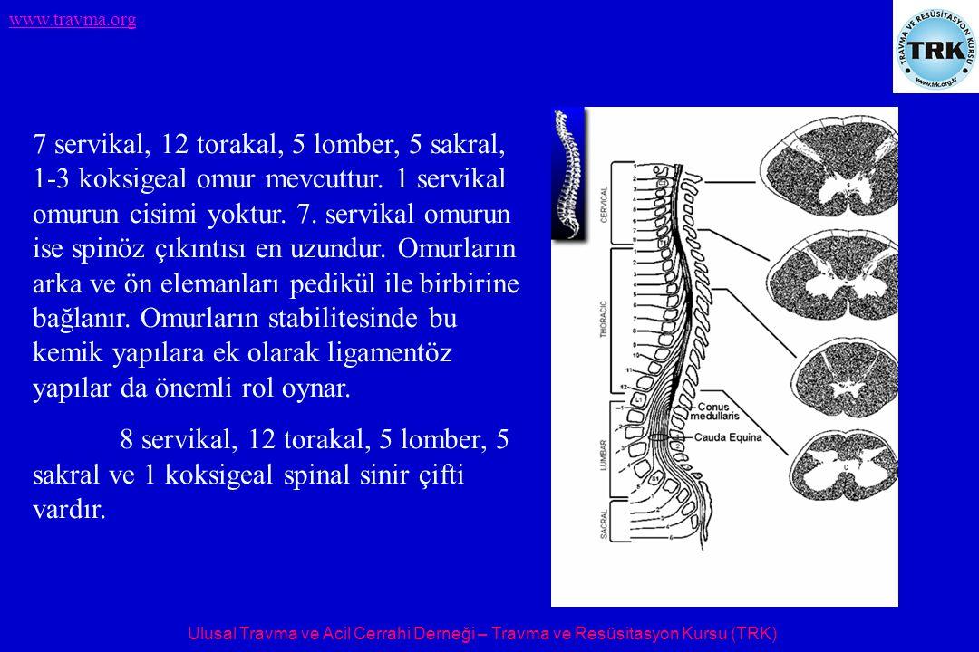 Ulusal Travma ve Acil Cerrahi Derneği – Travma ve Resüsitasyon Kursu (TRK) www.travma.org 7 servikal, 12 torakal, 5 lomber, 5 sakral, 1-3 koksigeal omur mevcuttur.