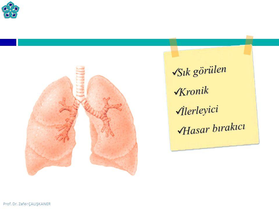 Prof. Dr. Zafer ÇALIŞKANER  Solunum fonksiyon testleri SPİROMETRE PEFMETRE