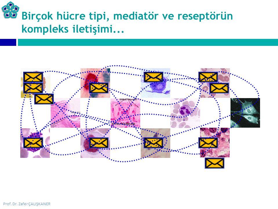 Prof. Dr. Zafer ÇALIŞKANER Birçok hücre tipi, mediatör ve reseptörün kompleks iletişimi...