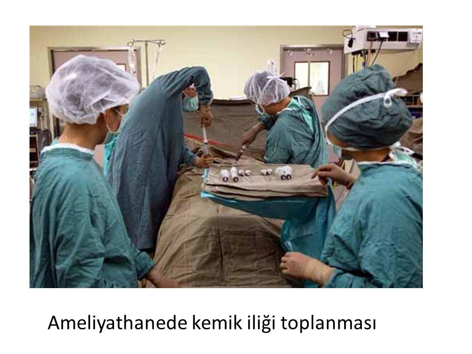 Ameliyathanede kemik iliği toplanması
