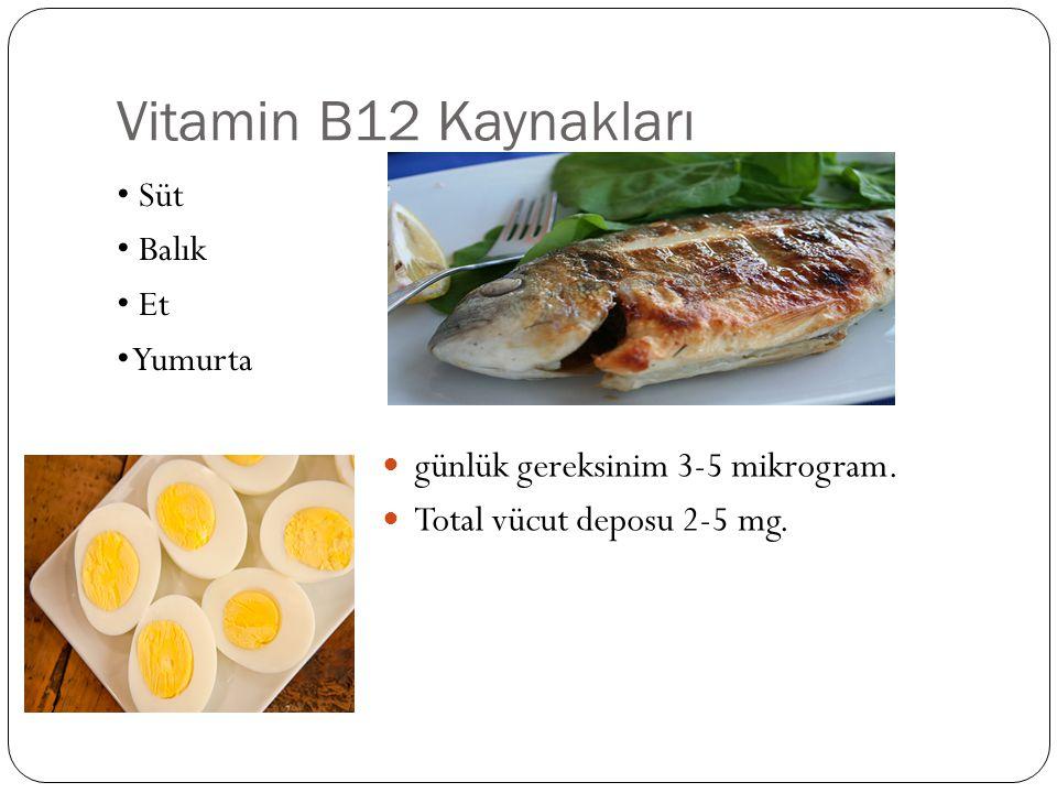 Vitamin B12 Kaynakları Süt Balık Et Yumurta günlük gereksinim 3-5 mikrogram.