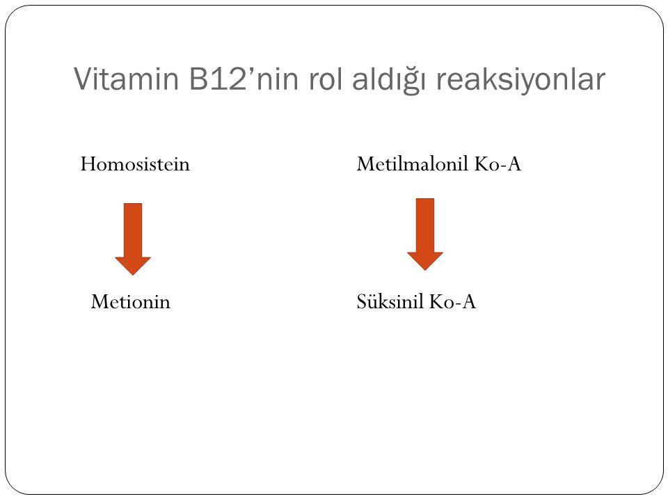 Vitamin B12'nin rol aldığı reaksiyonlar Homosistein Metionin Metilmalonil Ko-A Süksinil Ko-A