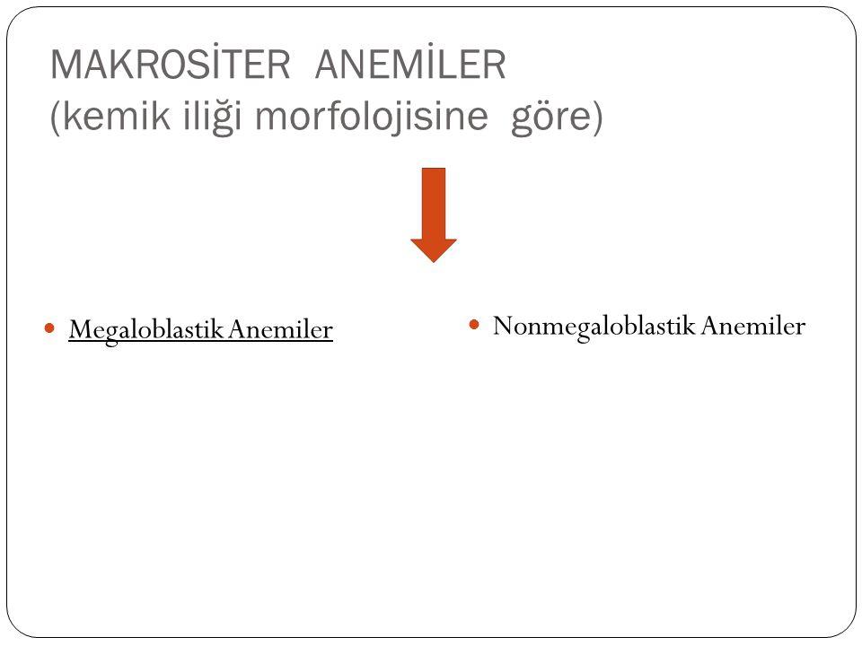 MAKROSİTER ANEMİLER (kemik iliği morfolojisine göre) Megaloblastik Anemiler Nonmegaloblastik Anemiler