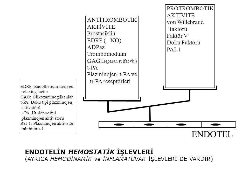ANTİTROMBOTİK AKTİVİTE Prostasiklin EDRF (= NO) ADPaz Trombomodulin GAG (Heparan sülfat vb.) t-PA Plazminojen, t-PA ve u-PA reseptörleri PROTROMBOTİK