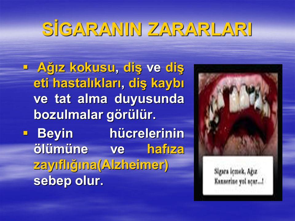 SİGARANIN ZARARLARI  Ağız kokusu, diş ve diş eti hastalıkları, diş kaybı ve tat alma duyusunda bozulmalar görülür.  Beyin hücrelerinin ölümüne ve ha