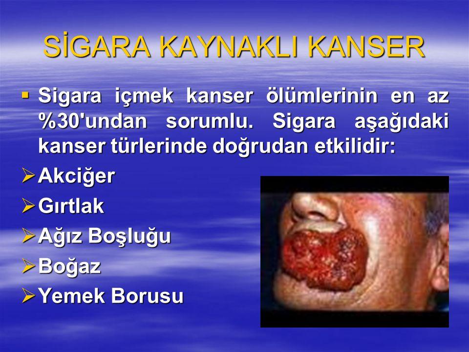 SİGARA KAYNAKLI KANSER  Sigara içmek kanser ölümlerinin en az %30'undan sorumlu. Sigara aşağıdaki kanser türlerinde doğrudan etkilidir:  Akciğer  G