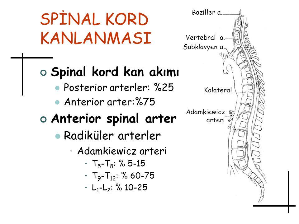 SPİNAL KORD KANLANMASI Spinal kord kan akımı Posterior arterler: %25 Anterior arter:%75 Anterior spinal arter Radiküler arterler Adamkiewicz arteri T