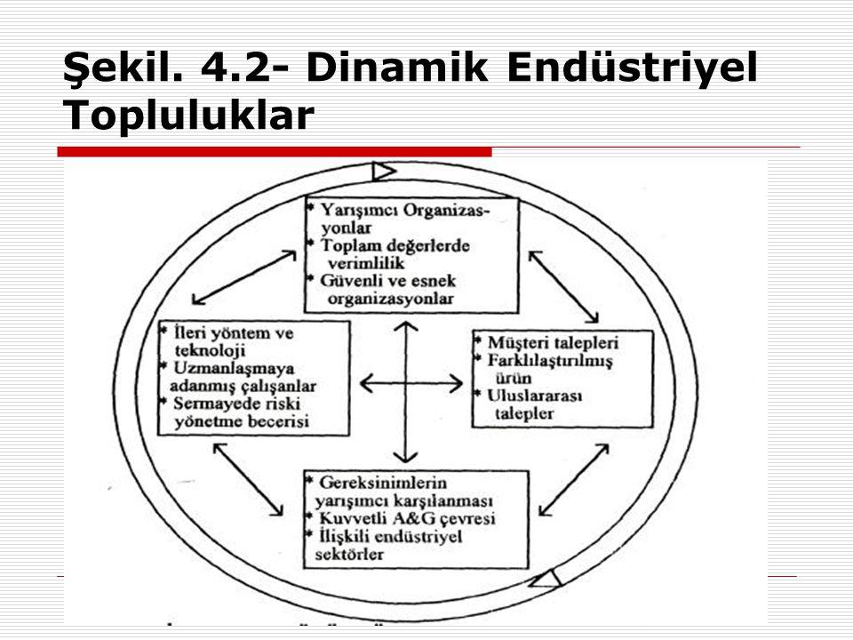 Şekil. 4.2- Dinamik Endüstriyel Topluluklar