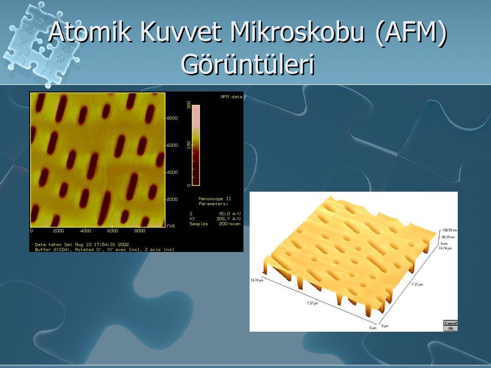 Atomik Kuvvet Mikroskobu (AFM) Görüntüleri