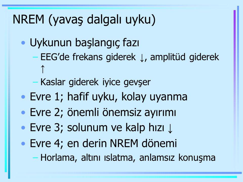 NREM (yavaş dalgalı uyku) Uykunun başlangıç fazı –EEG'de frekans giderek ↓, amplitüd giderek ↑ –Kaslar giderek iyice gevşer Evre 1; hafif uyku, kolay