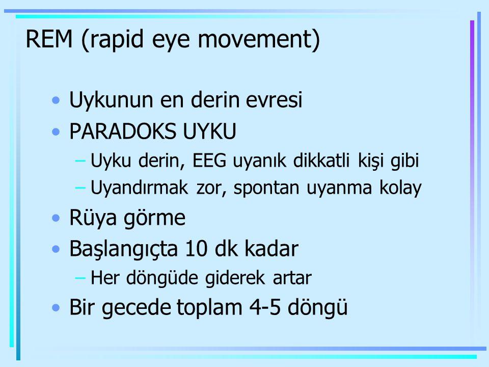 REM (rapid eye movement) Uykunun en derin evresi PARADOKS UYKU –Uyku derin, EEG uyanık dikkatli kişi gibi –Uyandırmak zor, spontan uyanma kolay Rüya g