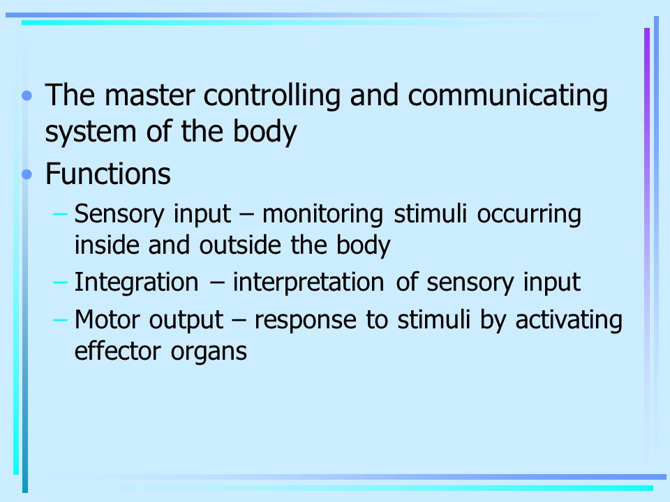 The master controlling and communicating system of the body Functions –Sensory input – monitoring stimuli occurring inside and outside the body –Integ